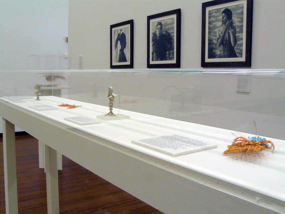 Installation of Exhibition showing insect display