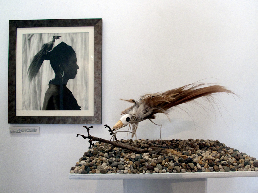 Bird of Paranoea and image of it being 'worn' by theShaman